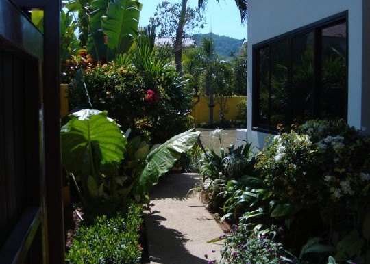 From Car Port to Garden