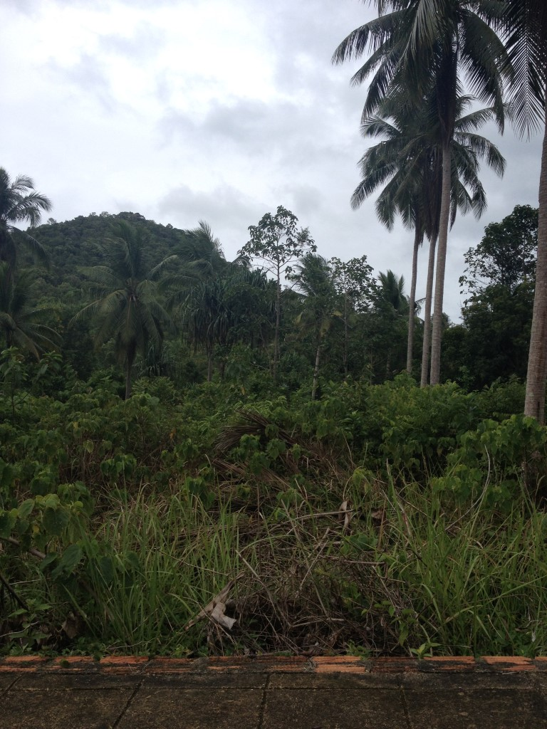 ​Rural Land at Had Sairee