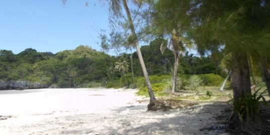 BEACH FRONT LAND REPORT